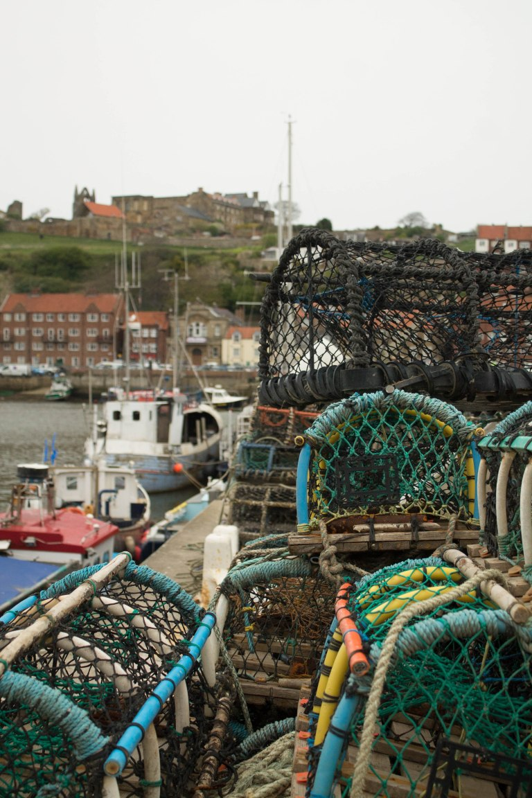 whitby nets